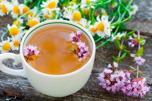 Как медики оценили пользу травяных чаев