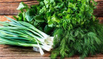 Научитесь выбирать натуральную зелень без нитратов