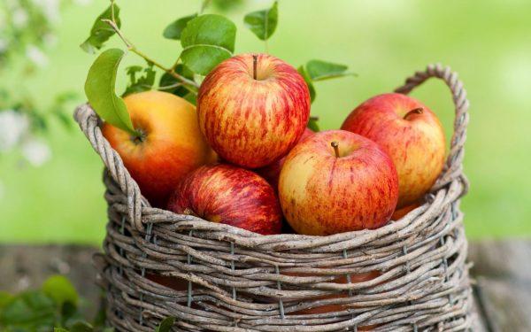 Одно яблоко в день увеличивает продолжительность жизни на треть