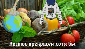 В космосе стали выращивать овощи (видео)