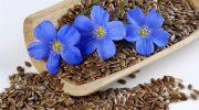 В чем опасность льняного семени для здоровья