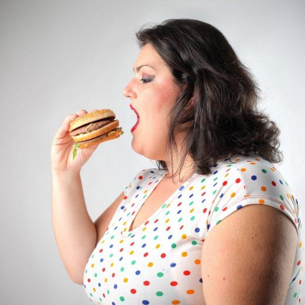 Влияние питания с избыточным жиром на мозг