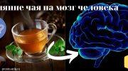Влияние чая на мозг человека