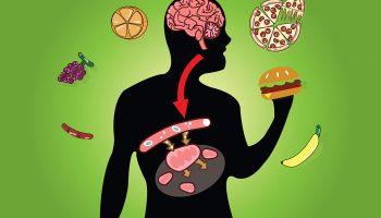 4 продукта, повышающих метаболизм