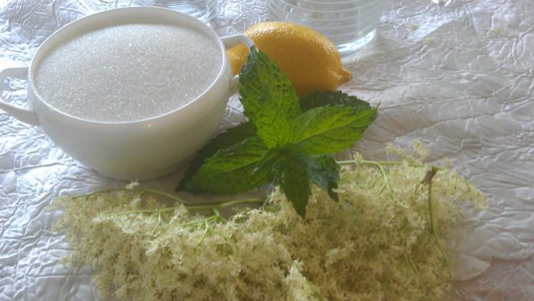 Самое время сделать освежающий чудо-напиток и монастырский сироп из бузины