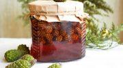 Время собирать сосновые шишки и варить вкусное целебное варенье