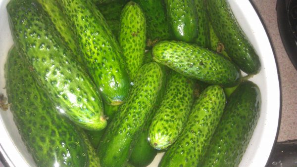 Венгерский огуречный салат Чаламада - любимая заготовка на зиму