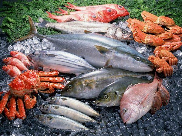 Морепродукты. Фото http://cgon.rospotrebnadzor.ru